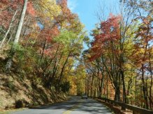 Fall in Asheville copy