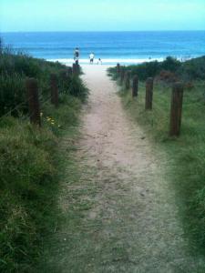 YEAR ABROAD WOLLONGONG BEACH